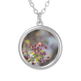 Becoming Spring Silver Plated Necklace