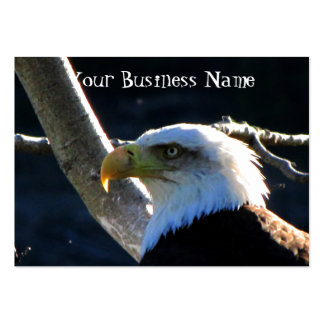 BECU Bald Eagle Close-Up Large Business Card