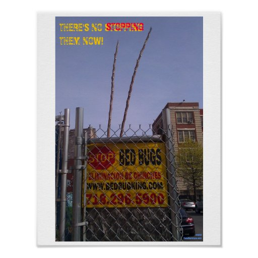 Bed Bug Poster 12a