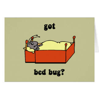 Bed bugs card
