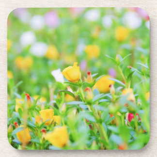 Bed of Flowers Coaster