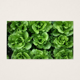 Bed of lettuce business card