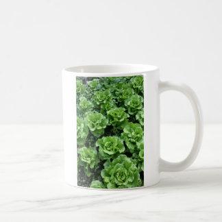 Bed of lettuce classic white coffee mug
