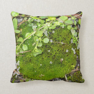 Bed of Moss Pillow!