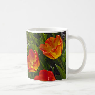 Bed of Orange Tulips Coffee Mugs