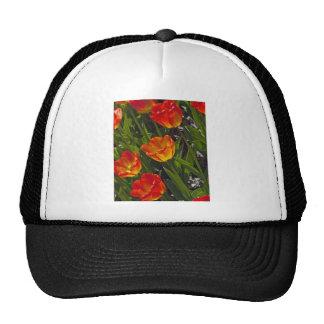 Bed of Orange Tulips Hat