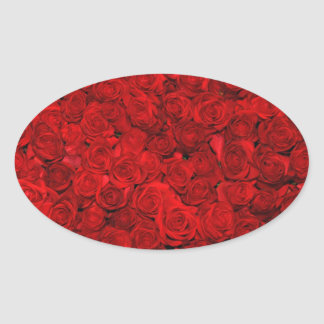 Bed of red roses oval sticker