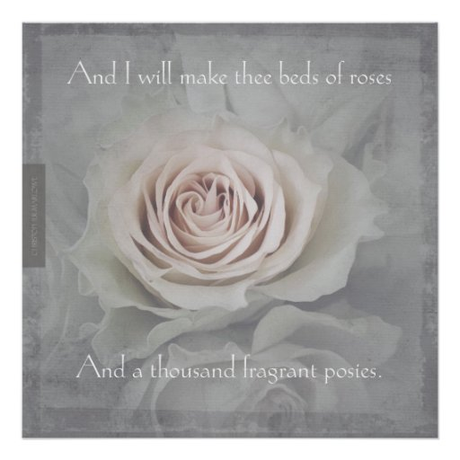 Bed of Roses Print