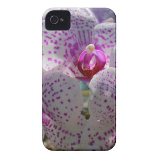 Bedazzled iPhone 4 Case