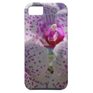 Bedazzled iPhone SE/5/5s Case