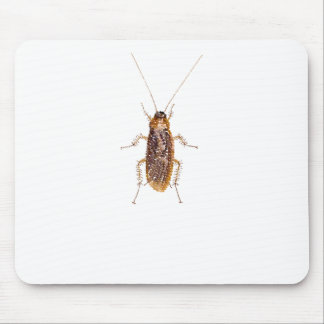 BEDAZZLED ROACH MOUSE PAD