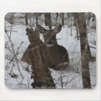 Bedded Down in Haynesville, Maine Mouse Pad