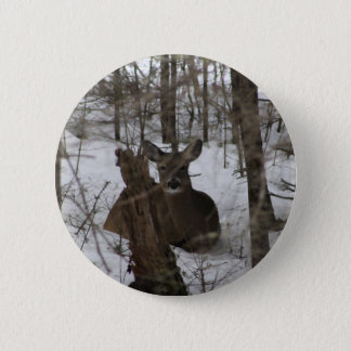 Bedded Down Pinback Button