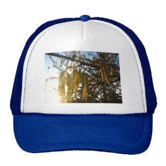 Bedecked Trucker Hat