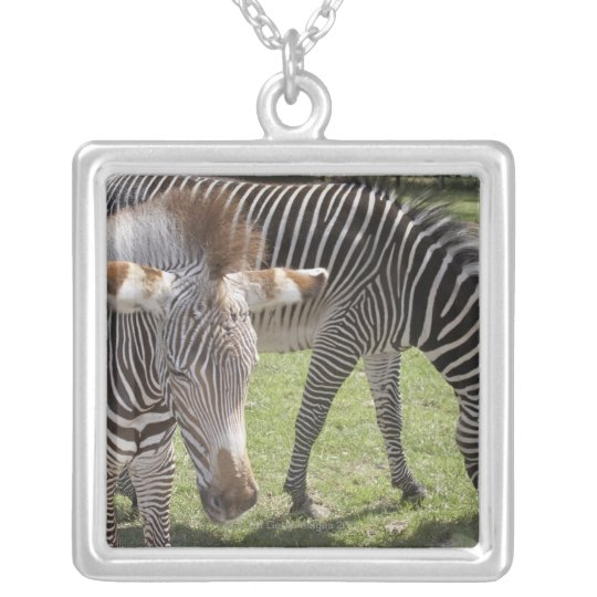 Bedfordshire, England Silver Plated Necklace