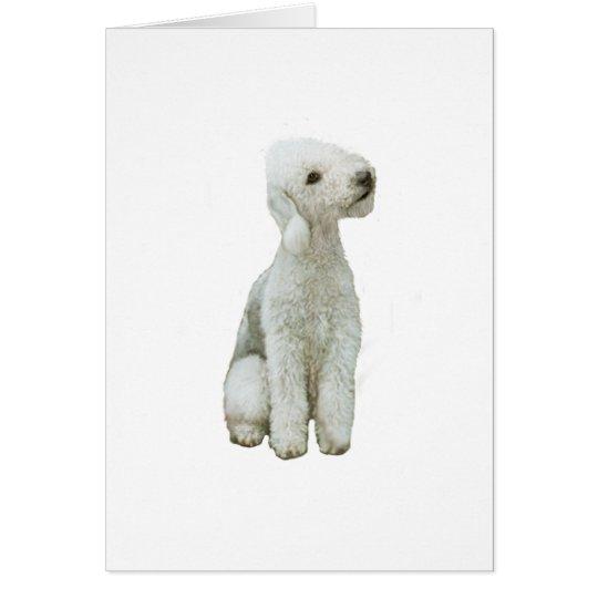 Bedlington Terrier (a) Tarjeta De Felicitación