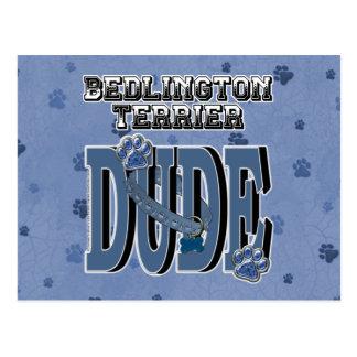 Bedlington Terrier DUDE Postcard