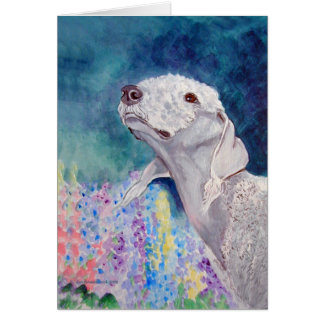 Bedlington Terrier Greeting Cards