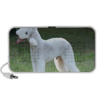 Bedlington Terrier lindo Laptop Altavoz