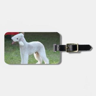Bedlington Terrier lindo Etiqueta De Equipaje
