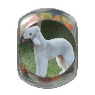 Bedlington Terrier lindo Jarras De Cristal Jelly Bely