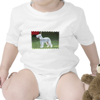 Bedlington Terrier lindo Camisetas
