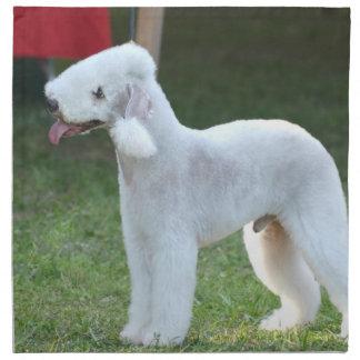Bedlington Terrier lindo Servilletas De Papel