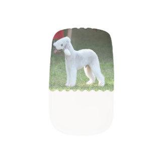 Bedlington Terrier Arte Para Uñas