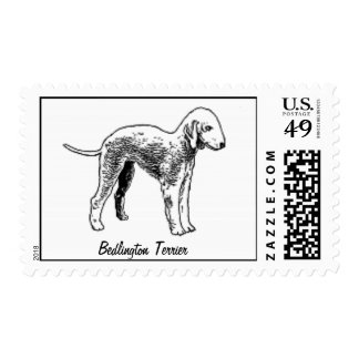 Bedlington Terrier Postage