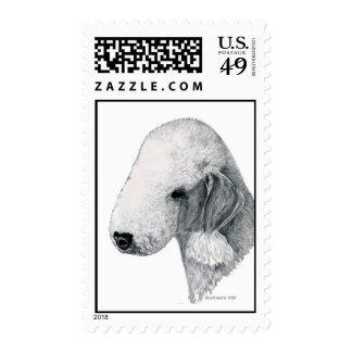 Bedlington Terrier Stamps