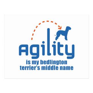 Bedlington Terrier Postcard
