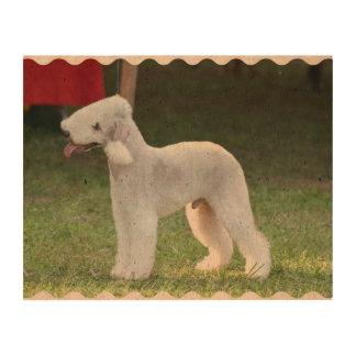 Bedlington Terrier Papel De Corcho