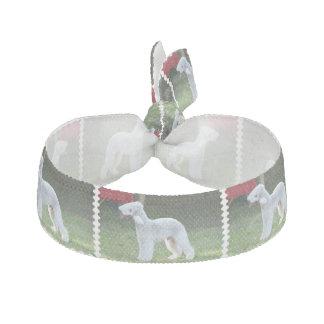 Bedlington Terrier Gomas De Pelo