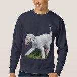Bedlington Terrier Sudadera