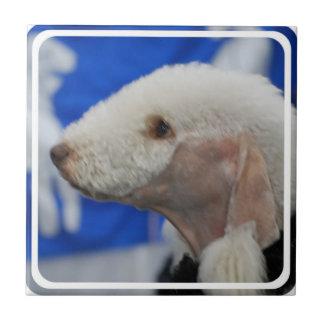 Bedlington Terrier Tile