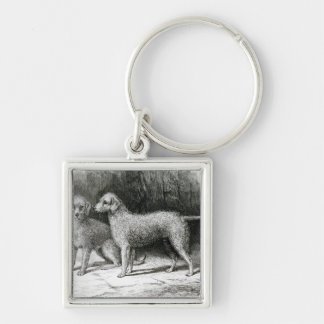 Bedlington Terriers- Mr. F. Armstrong's Key Chains