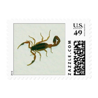 Bedroom Scorpion Postage