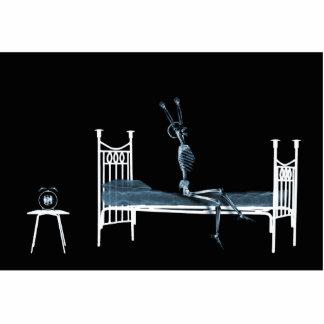 Bedtime X-Ray Skeleton Black Blue Cutout