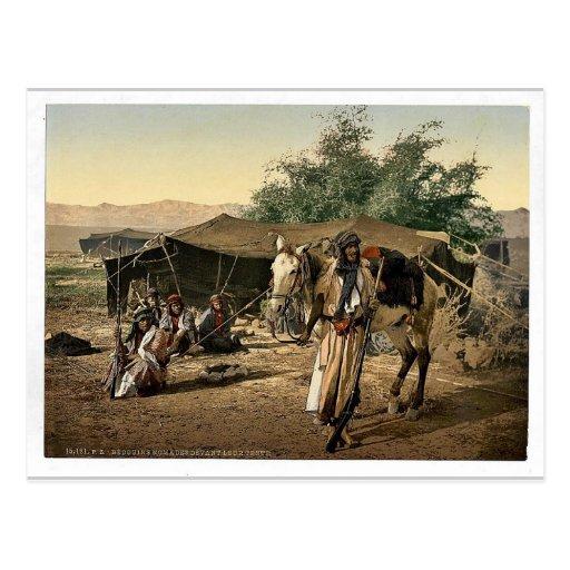 Beduinos y sus tiendas, Tierra Santa Photochro rar Tarjeta Postal