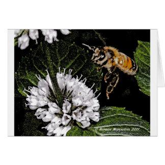 bee a card