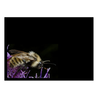 Bee, ALL that collected is MINE! Business Card Templates