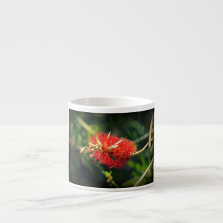 Bee and a Bottlebrush Espresso Cup
