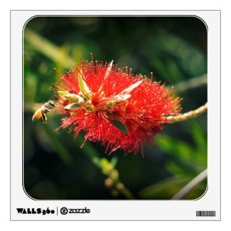 Bee and a Bottlebrush Wall Decal