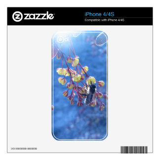 Bee and Berberis Flowers Decal For iPhone 4
