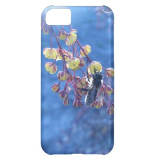 Bee and Berberis Flowers iPhone 5C Cover