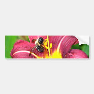Bee and Daylily Bumper Sticker