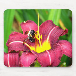 Bee and Daylily Mouse Pad