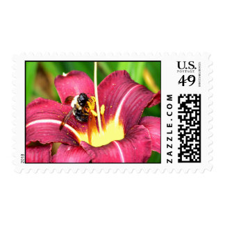 Bee and Daylily Postage