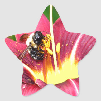 Bee and Daylily Star Sticker