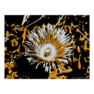 Bee and flower illustration black yellow white posters